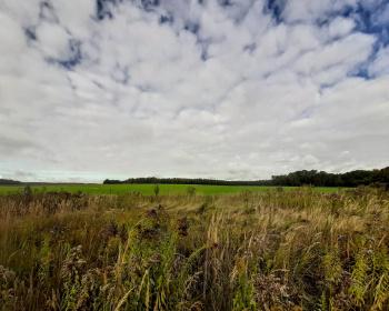 Działki rolno - budowlane - rynek wtórny,Sprzedaż,3336