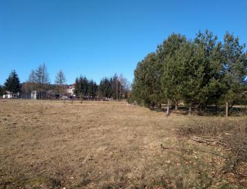gmina Przybiernów, ,Działki rolne - rynek wtórny,Kupno,2545